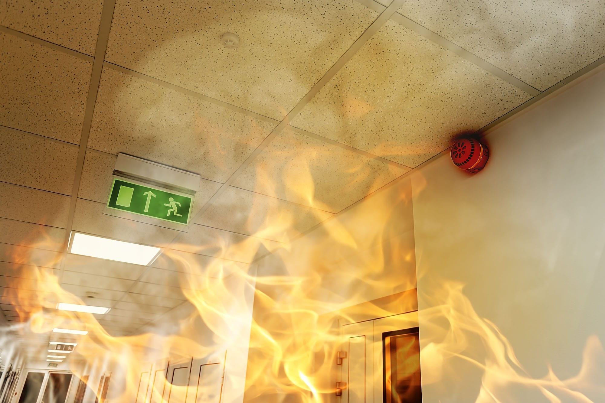 Tristan Meears-White: New Building Safety and Fire Safety Bills